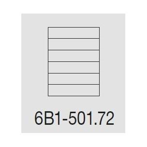 Casellare postale Serie SC5 standard modello 6B1-501.72