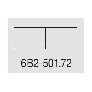 Casellare postale Serie SC5 standard modello 6B2-501.72